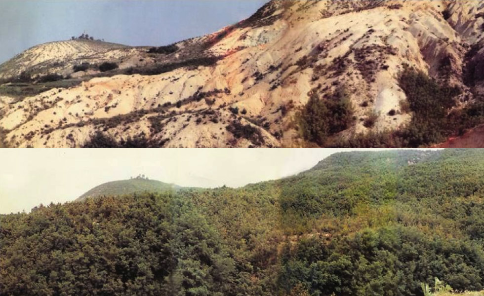 Same area before 1960 (top) and after 2000 (bottom)